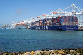 Port 2000, Port du Havre